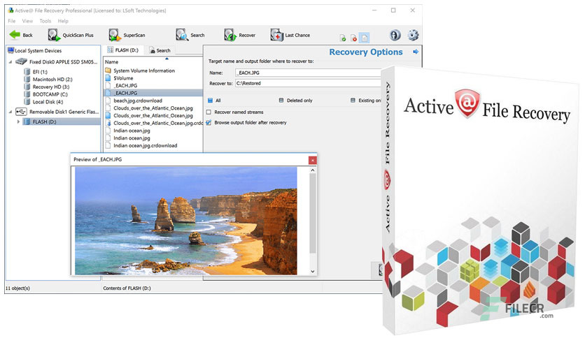 Active File Recovery 21.0.2 Free Download With Crack